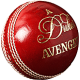Dukes Avenger 'A' Cricket Ball