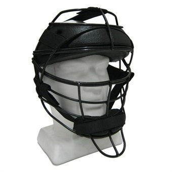 2017 Aero P2 Wicketkeeper Face Protector