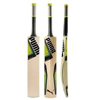 2016 Puma evoSpeed 4 Cricket Bat
