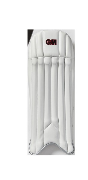 2019 Gunn and Moore Mythos Wicket Keeping Pads