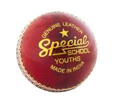 Readers School Special Junior Cricket Ball